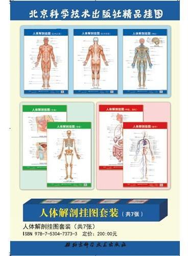 人体解剖挂图套装(共7张)