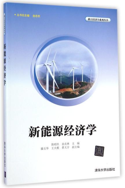 新能源经济学(新兴经济学系列丛书)