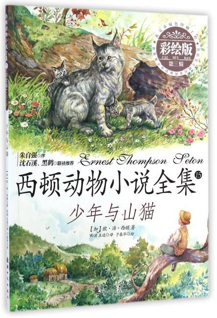 小木马童书 少年与山猫(彩绘版)(第三辑)