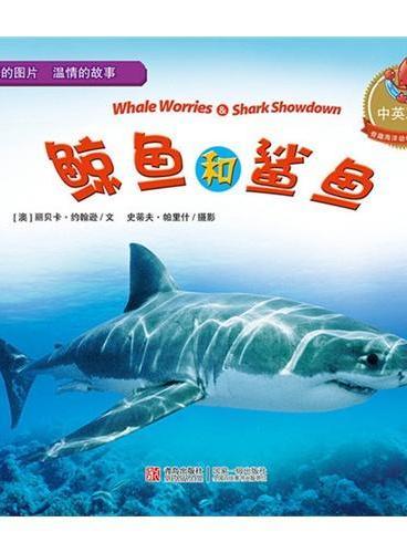 鲸鱼和鲨鱼