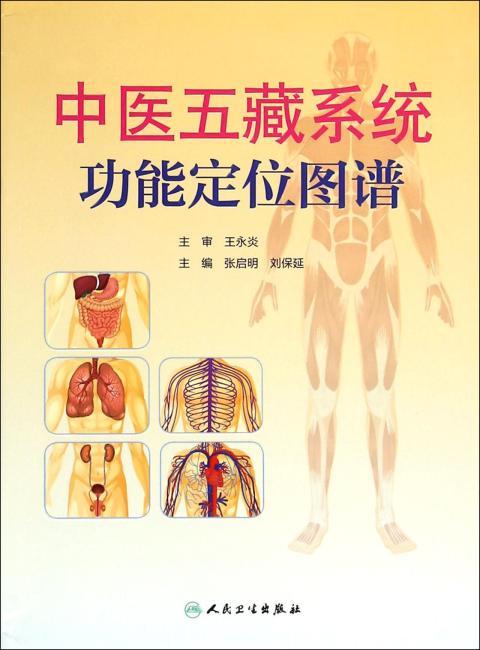 中医五藏系统功能定位图谱