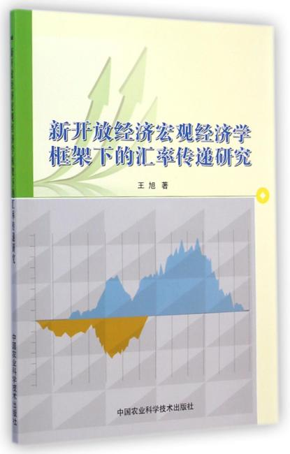 新开放经济宏观经济学框架下的汇率传递研究