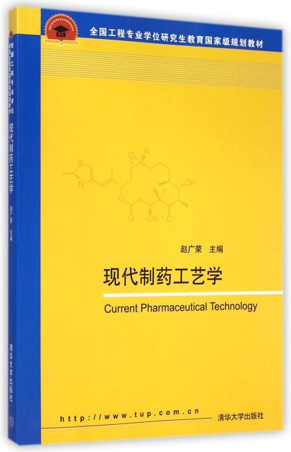 现代制药工艺学(全国工程专业学位研究生教育国家级规划教材)