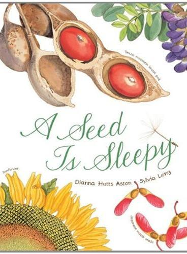 "A Seed Is Sleepy""美丽成长""生命科普绘本系列:种子,如此酣睡(平装) IBSN9781452131474"