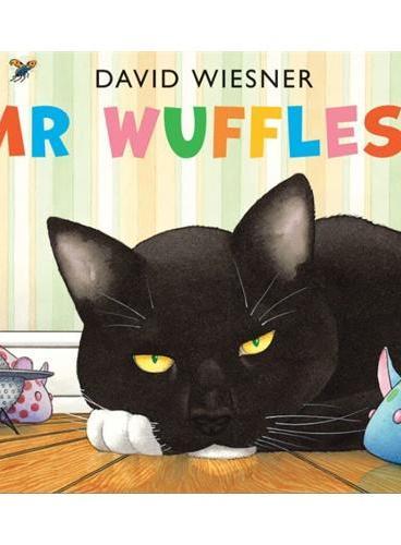 Mr Wuffles! [Paperback] 华夫先生!(2014年凯迪克银奖、大卫-威斯纳最新作品,平装) ISBN9781849397803