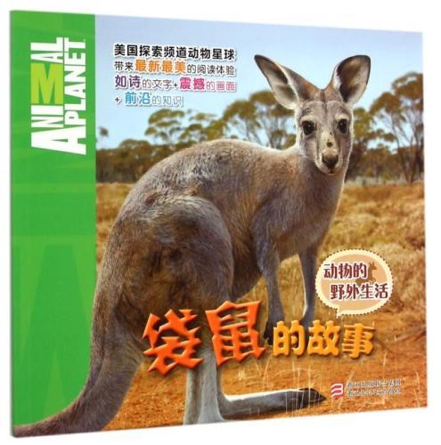 动物的野外生活:袋鼠的故事