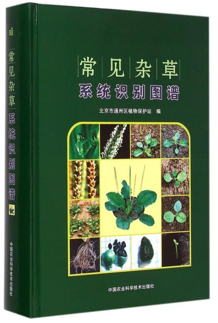 常见杂草系统识别图谱