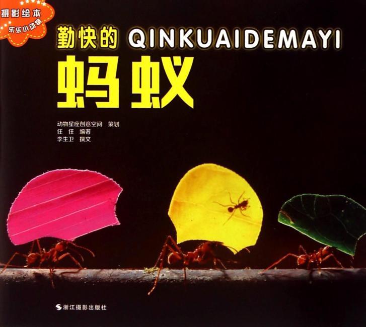 乐乐小动物:勤快的蚂蚁