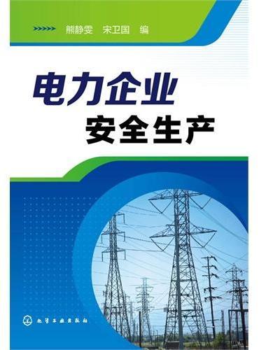 电力企业安全生产
