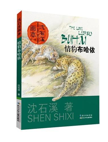 沈石溪画本(第一辑)·情豹布哈依