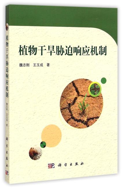 植物干旱响应机制