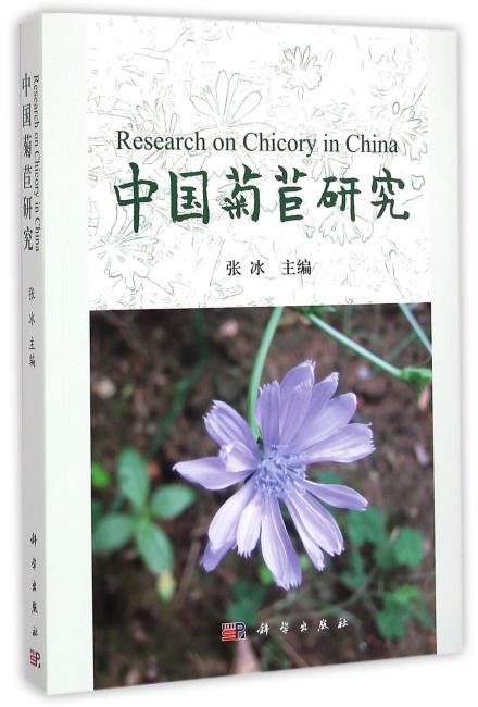 中国菊苣研究