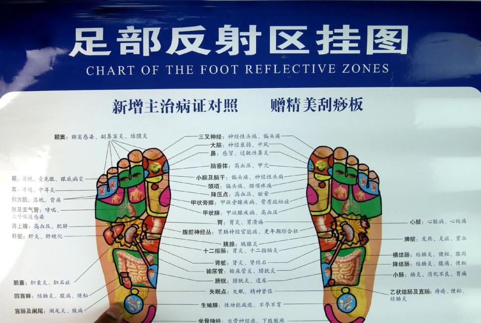 足部反射区挂图(新增主治病证对照,赠精美刮痧板)