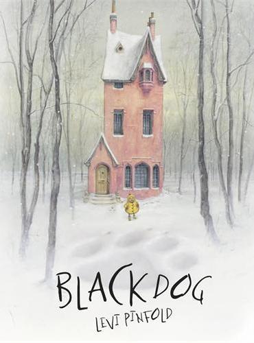 Black Dog (Paperback)大黑狗(荣获凯特格林纳威大奖,平装)ISBN9781848777484