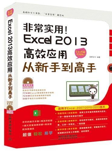 非常实用 Excel 2013高效应用从新手到高手(全彩图解视频版)(附光盘)