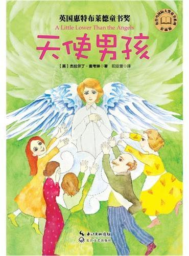 天使男孩(彩插版)布谷鸟国际大奖童书系列