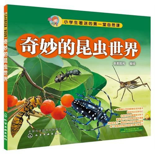 奇妙的昆虫世界