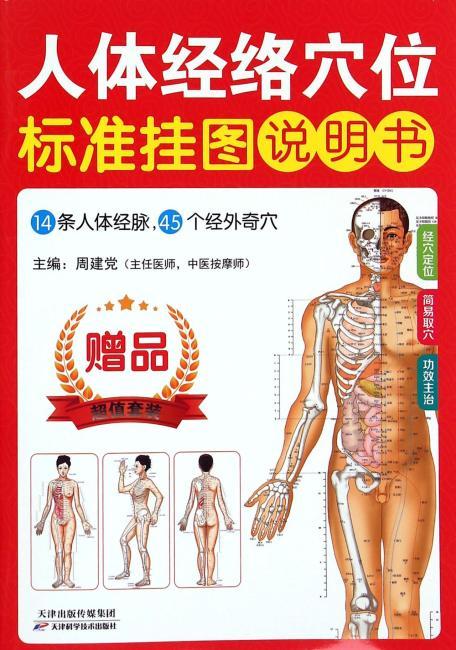 人体经络穴位标准挂图(女性)