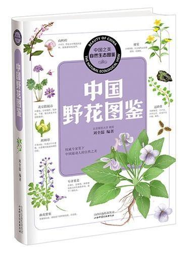 中国之美 自然生态图鉴 中国野花图鉴