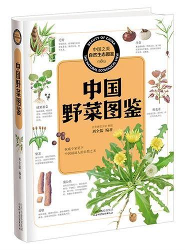 中国之美 自然生态图鉴 中国野菜图鉴