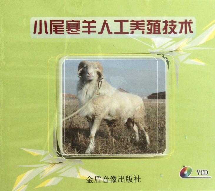 小尾寒羊人工养殖技术
