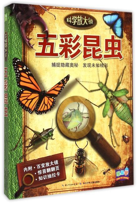 科学放大镜:五彩昆虫
