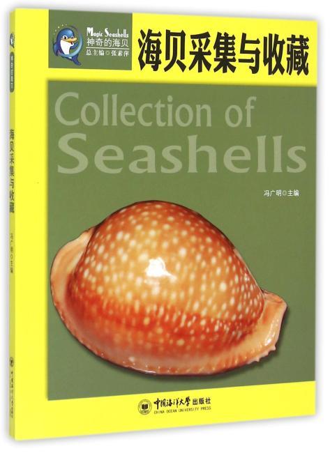 海贝采集与收藏