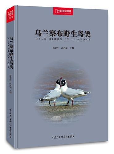 中国国家地理-乌兰察布野生鸟类