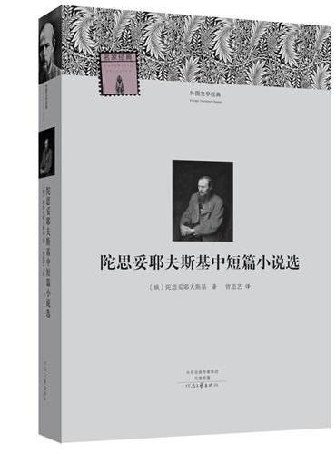外国文学经典:陀思妥耶夫斯基中短篇小说选