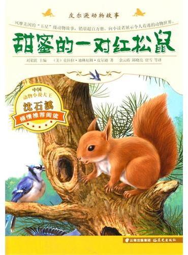 皮尔逊动画故事-甜蜜的一对红松鼠