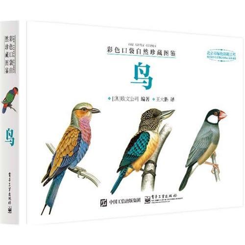 彩色口袋自然珍藏图鉴 鸟(全彩)