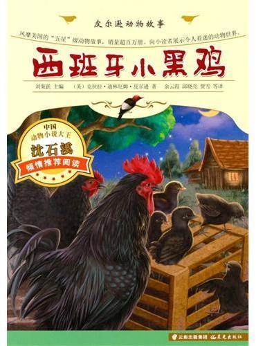 皮尔逊动画故事-西班牙小黑鸡
