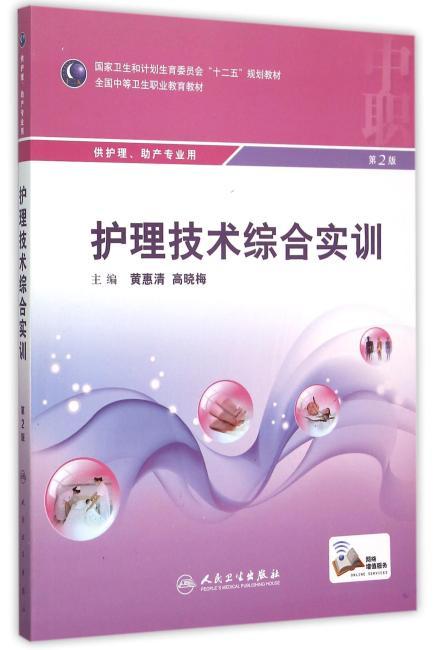 护理技术综合实训(第2版/中职护理/配增值)