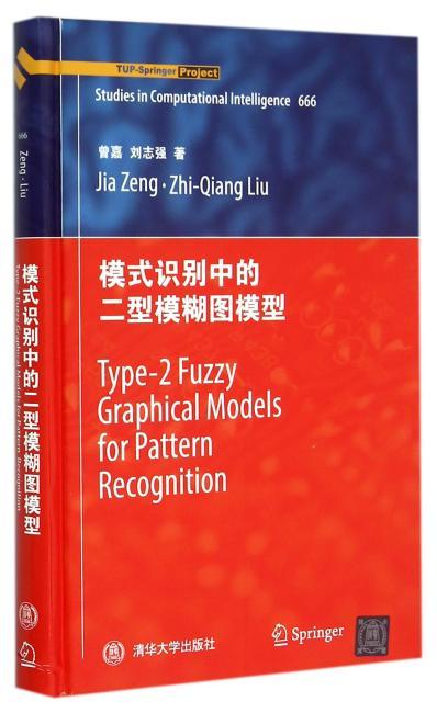 模式识别中的二型模糊图模型