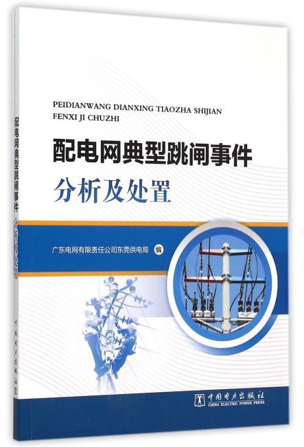 配电网典型跳闸事件分析及处置