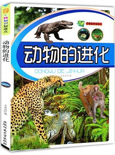 动物的进化(生物知识知道点)