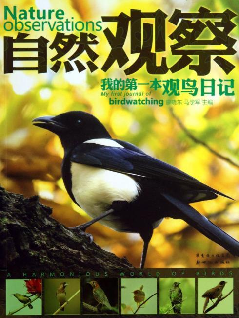 自然观察:我的第一本观察鸟日记