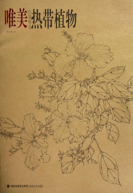 唯美白描精选:热带植物