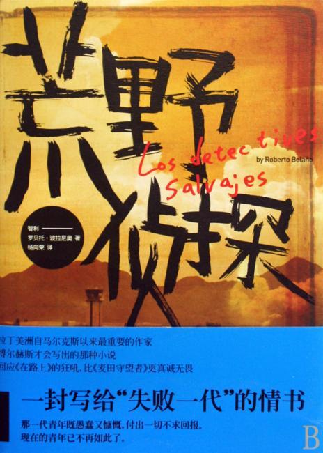 荒野侦探(荣获2009全国年度十大好书!)
