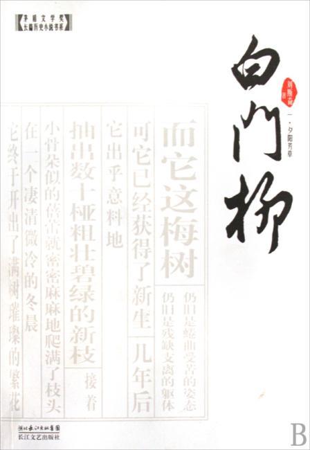 白门柳(套装全3册)