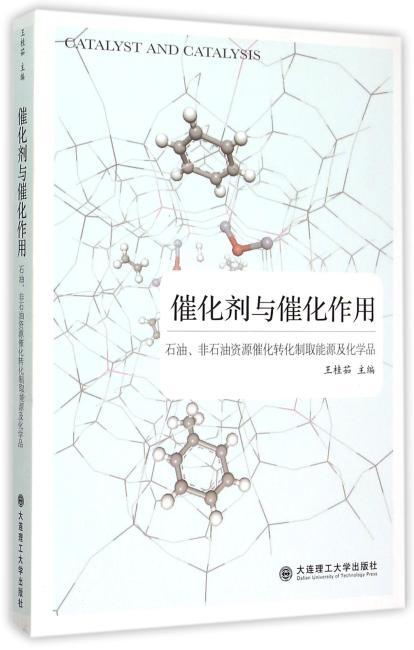 催化剂与催化作用——石油、非石油资源催化转化制取能源及化学品