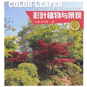 彩叶植物与景观