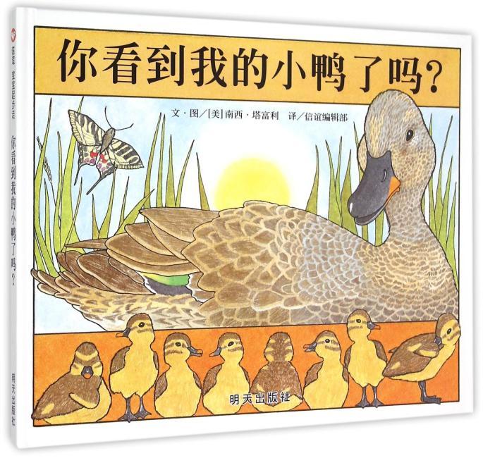 信谊宝宝起步走-你看到我的小鸭了吗?
