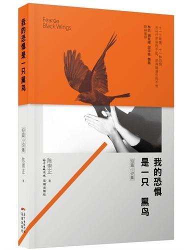 我的恐惧是一只黑鸟(十一个故事,十一种恐惧,天马行空杂而不乱,波涛暗涌引而不发)