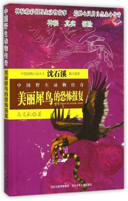 中国野生动物传奇-美丽犀鸟的恐怖报复