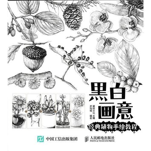 黑白画意——经典植物手绘教程