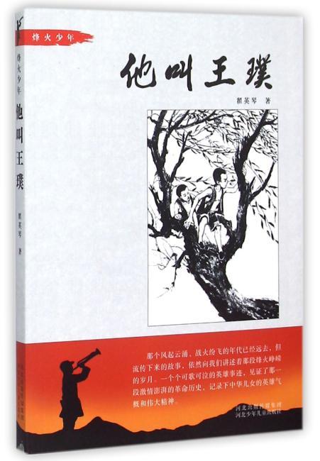 他叫王璞-烽火少年系列