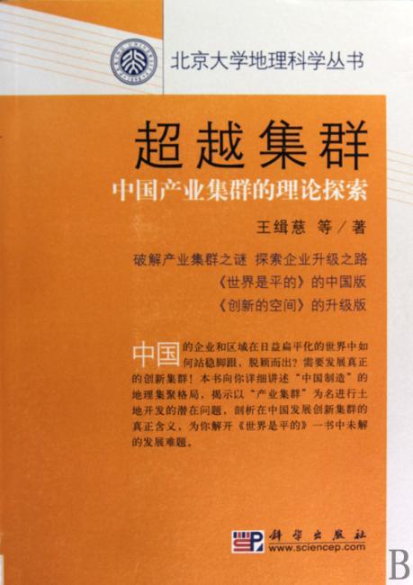超越集群——中国产业集群的理论探索