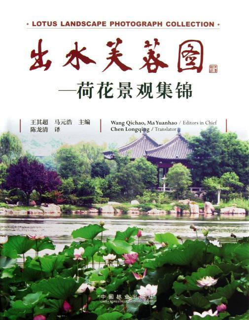 出水芙蓉图—荷花景观集锦