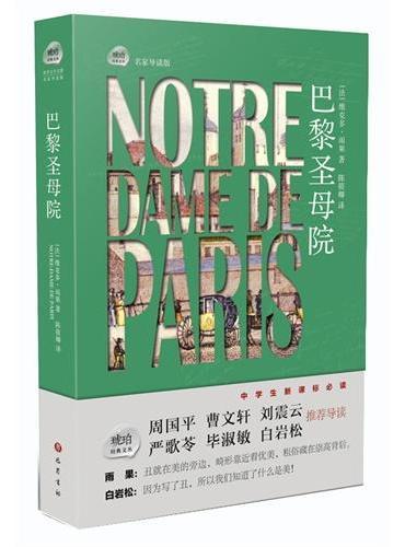 琥珀经典文丛 :巴黎圣母院